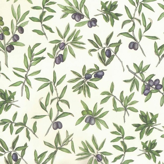 Olives Print Italian Paper ~ Leonardo Communication