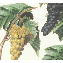 Grapes and Leaves Vineyard Print Italian Paper ~ Leonardo Communication