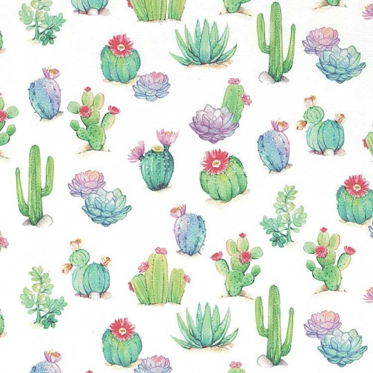 Watercolor Mixed Cactus Paper ~ Italy