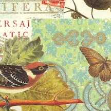 Birds and Grapes Collage Print Paper ~ Rossi Italy