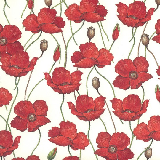 Red Poppies Floral Print Paper ~ Rossi Italy