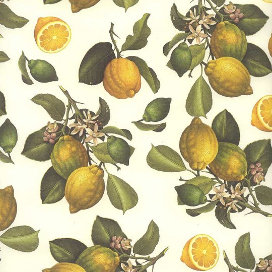 Yellow Lemons Fruit Print Paper ~ Rossi Italy