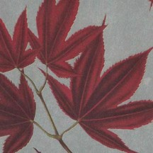 Autumn Leaves on Silver Leaf Print Paper ~ Rossi Italy