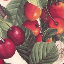 Red Cherries Italian Paper ~ Tassotti