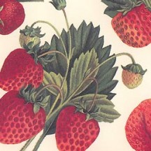 Strawberries and Leaves Italian Paper ~ Tassotti