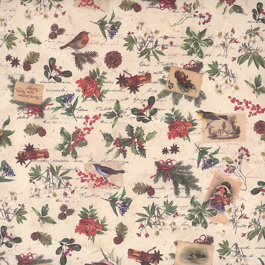 Petite Christmas Berry & Bird Holiday Print Paper ~ Tassotti