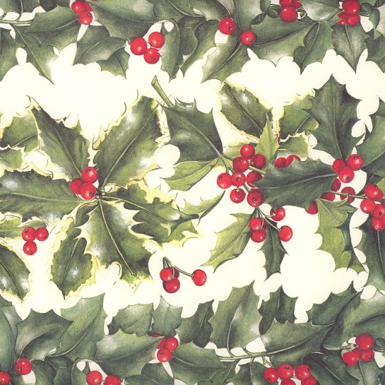 Large Holly Borders Christmas Print Paper ~ Tassotti