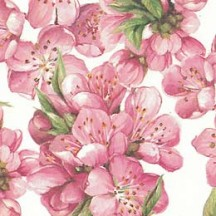 Pink Cherry Blossoms Floral Print Italian Paper ~ Tassotti