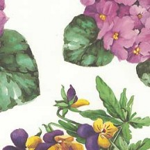 Pansy and Hydrangea Floral Print Italian Paper ~ Tassotti