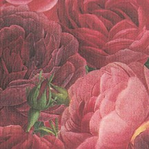 Red Cabbage Roses Italian Paper ~ Tassotti
