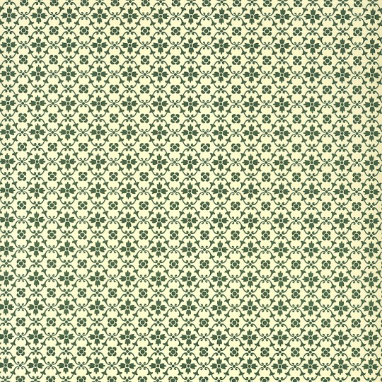 Green Kitchen Flower Print Italian Paper ~ Carta Varese Italy