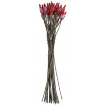 Long Red and Brown Vintage Czech Flower Stamen