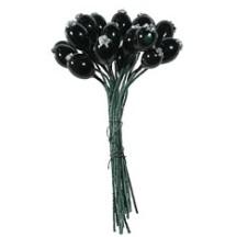 "18 Miniature Glossy Black Currants ~ 3/8"" ~ Czech Republic"