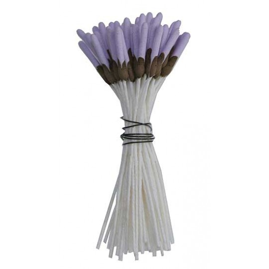 Lavender and Brown Elongared Flower Stamen ~ Germany