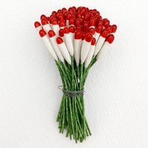 Long Red and White Cigar Stamen with Green Wired Stems