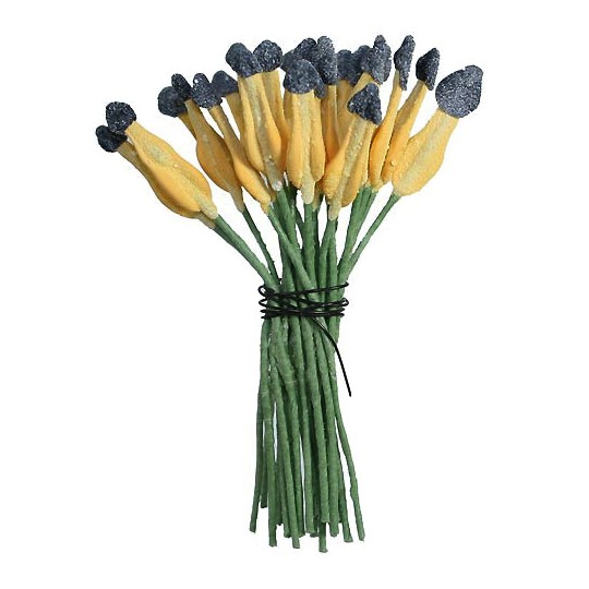 Yellow and Black Paddle Shaped Flower Stamen ~ Germany