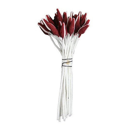 Matte Burgundy with White Stripe Flower Stamen ~ Germany