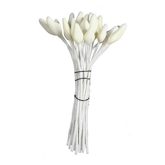 Matte Ivory with White Stripe Flower Stamen ~ Germany