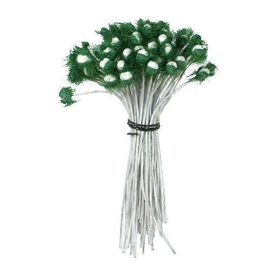 Medium Fuzzy Green and White Flower Centers Stamen ~ Germany