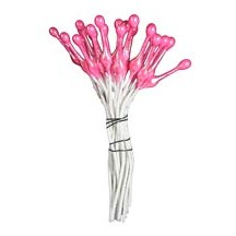 Bright Pink Fantasy Specialty Flower Stamen ~ Germany