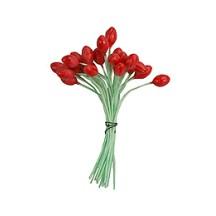 Red Bud Flower Stamen ~ Germany