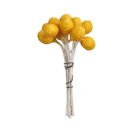 Textured Yellow Berry Stamen ~ Germany