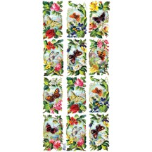 1 Sheet of Stickers Mixed Butterfly Vignettes