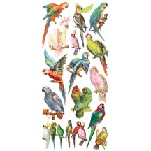 1 Sheet of Stickers Colorful Mixed Parrots
