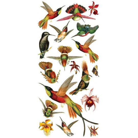 1 Sheet of Stickers Hummingbirds and Orchids