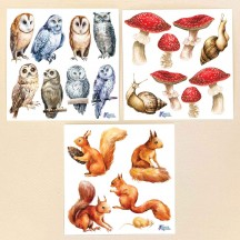 Petite Stickers of Squirrels, Mushrooms and Owls ~ 3 Sheet Mixed Sticker Set