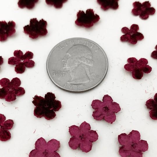 Mini Die-cut Velvet Forget Me Not Flowers ~ Set of 48 ~ BURGUNDY