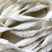"Large 5"" Bump Chenille in Antique White ~ 1 yd."
