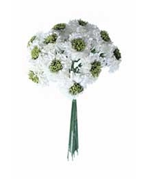 12 White Paper Asters