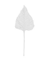 Extra Large Embossed White Velvet Leaf
