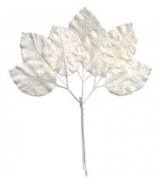 Large Sprig of White Velvet Rose Leaves ~ Vintage Japan