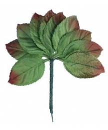 Set of 10 Embossed Petite Green Ombre Leaves ~ Czech Repub.