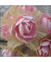 12 Pale Pink Paper Pacific Roses