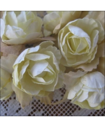 12 Pale Yellow Paper Pacific Roses