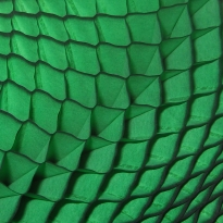 Old Fashioned Honeycomb Paper in Green ~ 1 Sheet